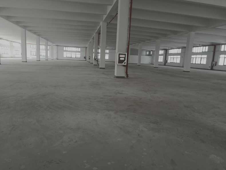 出租张浦独栋标准厂房
