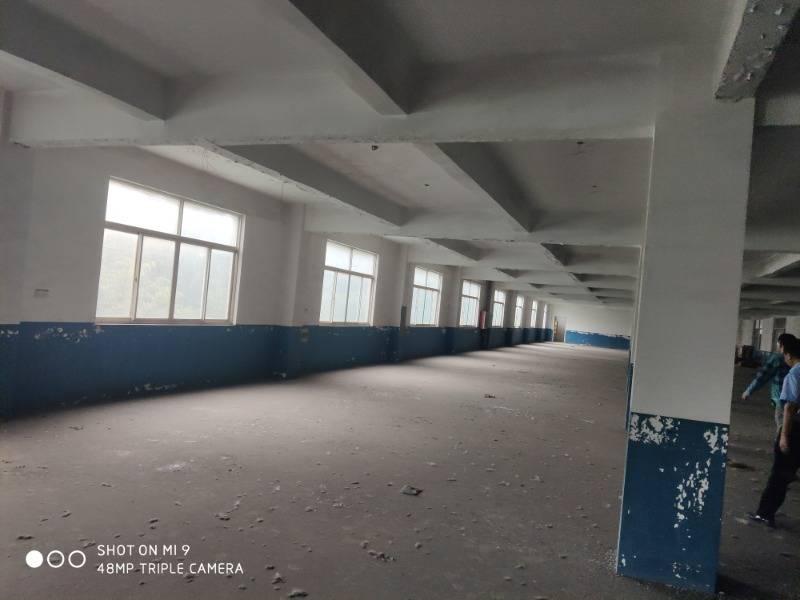 云亭园区五层服装纺织厂房出租