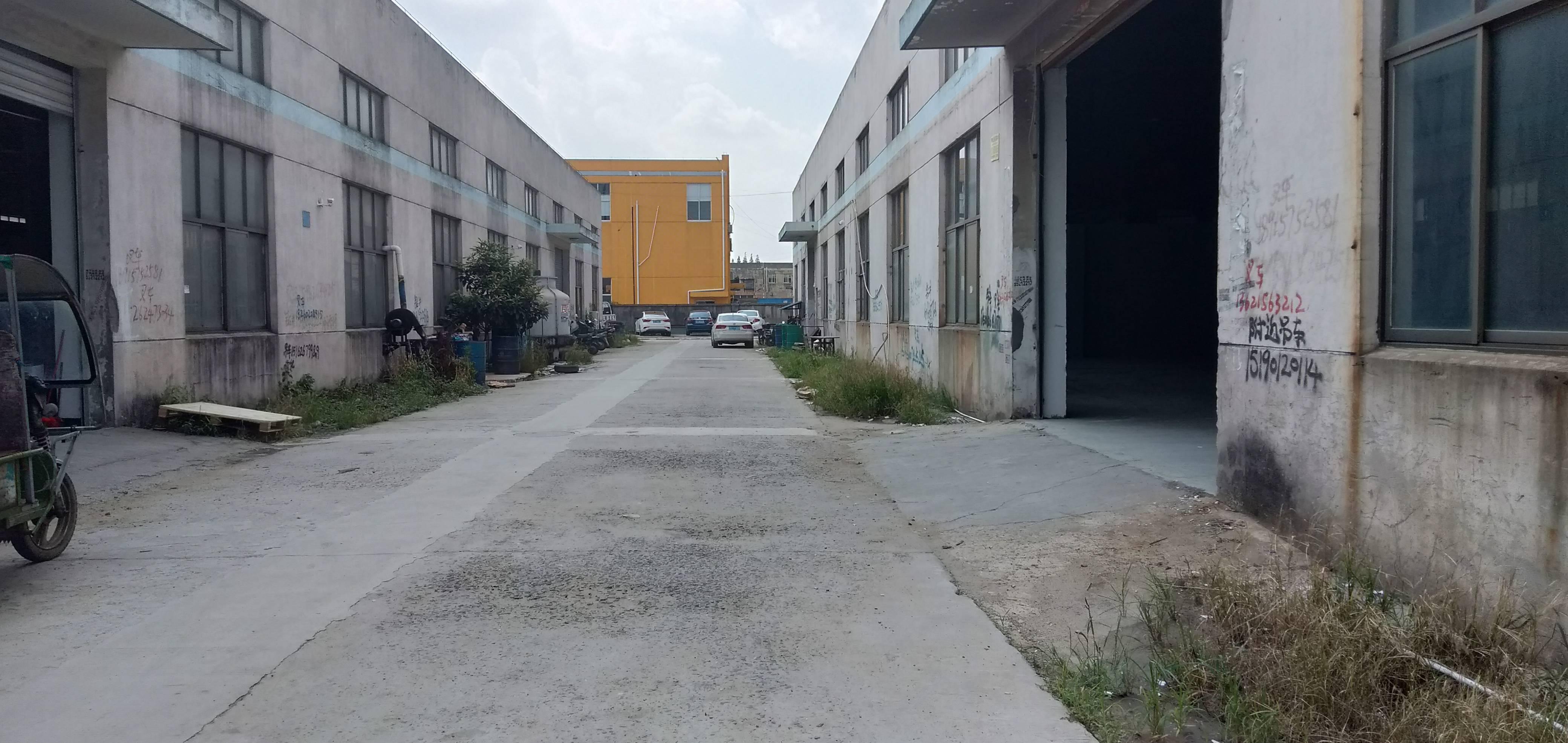 出租张浦南港1600平米标准厂房